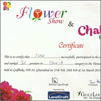 CHW Certificate Flower Show