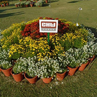 CHW CHW Forge won 1st prize in Greater Noida Flower Show 2017